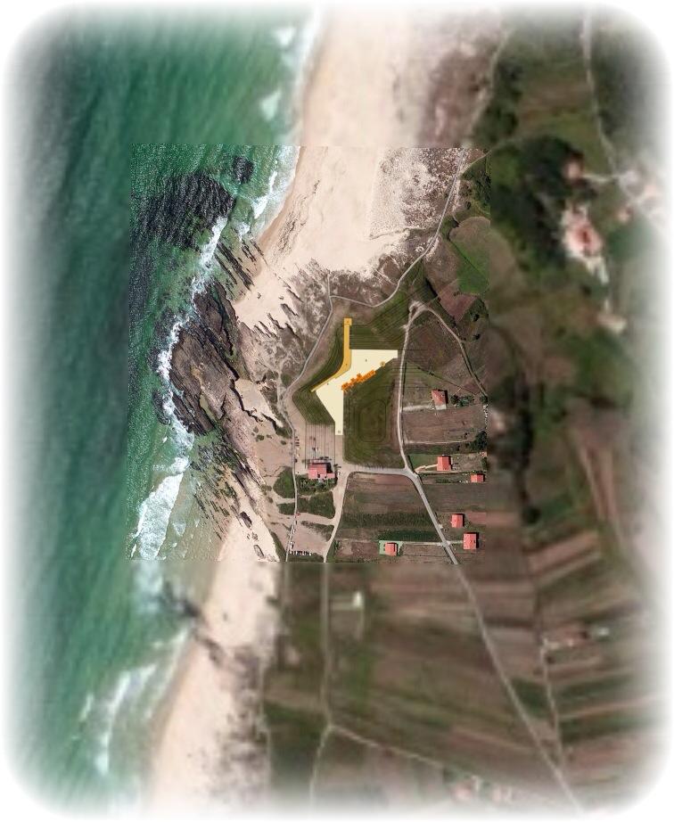 Camp surf Las Furnas 01